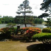 二宮家のバラ園と日本庭園
