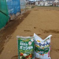 トウモロコシ 枝豆畝が完成です