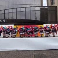 上武大学雑草祭