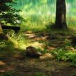 翠の静寂。