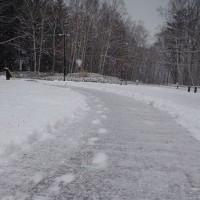 雪! Snow