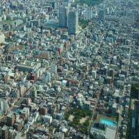 東京散歩中です