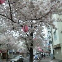 春真っ盛りの街