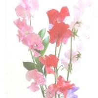 花を描きたくなる