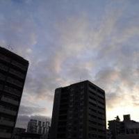 今日の私は797 【1月17日の博多の朝です】