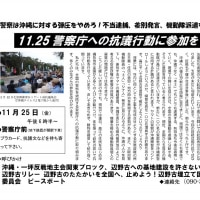 11.25沖縄弾圧警察庁抗議行動
