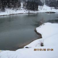 二十四節季・大寒と・・・・ブログ更新しました!