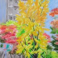 名古屋―白川公園の黄葉