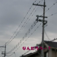 早朝より大雨。。(☆_☆)~そして謎の幾何学模様とは?