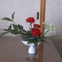 八月のお花 カーネーション(なでしこ科)サンデルシー(百合科)ドラセナゴットセフィア(リュウゼツラン科)