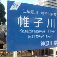 横浜駅前にある川はどこから来ているのか・・・?