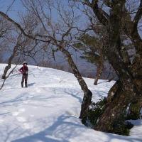 2017/03/20(月) 小佐波御前山は雪がいっぱい