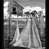網を引き揚げる漁民ら ベトナムTrà Vinh省