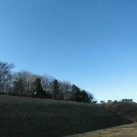 たまたま見つけた城跡を散策、飛山城史跡公園。