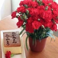 お花とカステラ