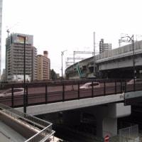 宮城野橋が開通した