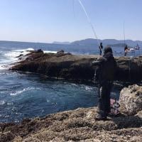 春の釣り日和
