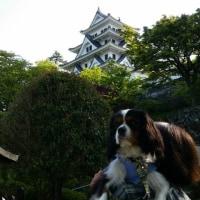 キャバ号 岐阜、福井をゆく