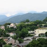 小田原城・天守閣からの景色