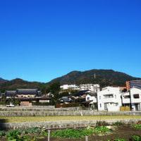 2016年武田山