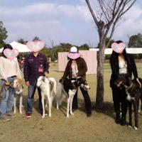 ペットの祭典201(広島県立びんご運動公園)
