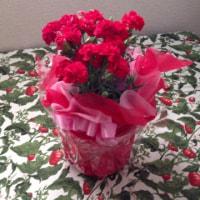 母にバラを送ります
