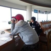 たらカキ焼海道へ