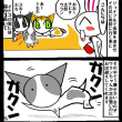 可愛いお迎え(=^・・^=)&ペット自慢