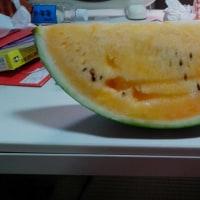 ライフ昭和町駅前店で4割引きで買ったスイカ2日続けて食べてすぐに下痢。これは、私の腹が原因?