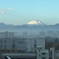 朝から綺麗な富士山