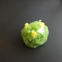 上生菓子【菜の花】