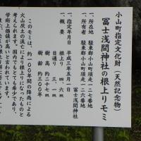 東口本宮富士浅間神社