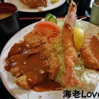 加古川でカツ飯(^_-)-☆