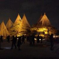 金色に輝く、冬の兼六園2012