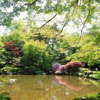 皐月の庭園。