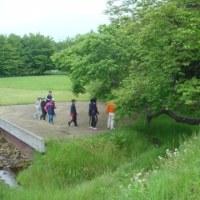 黄金小学校が縄文の学習に来る