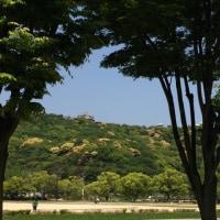 新緑浴@城山公園