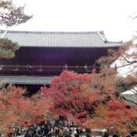 南禅寺、紅葉