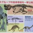 恐竜展に怖くて入れない子