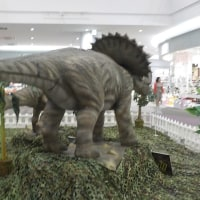 今年も恐竜ロボットが・・・^^