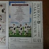 いきものがかり いきもの学級新聞 No.41号 いきものがかり放牧宣言!!  1月5日の報道から・・・