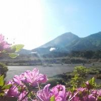 5月20日(土)のえびの高原