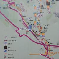 新緑の箱根路一周一泊二日(5/12-13)の旅行ってきました