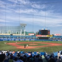 頑張れ、東京大学野球部、法政大学野球部!それから私!