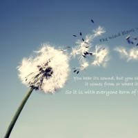 ��  The wind blows wherever it pleases.      ��