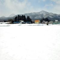 17-02-24 今日も風強し