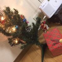 クリスマスボーナススタートでぃす!!!