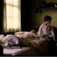 0455. 蜂蜜 (2010)