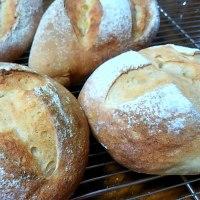 初夢と レモン酵母のパン
