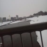 札幌まちなか探検隊 今日の景色その1